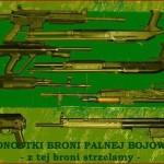 Akademia Obrony Saggita Tadeusz Dubicki Strzelanie Bojowe Strzelanie Specjalne 23