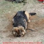 Akademia Obrony Saggita Tadeusz Dubicki Strzelanie Bojowe Warsztaty Snajperskie 3 14
